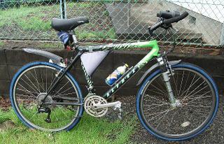 Runner2005