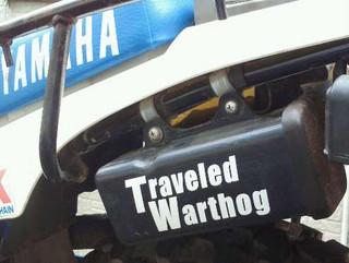 Traveledwarthog